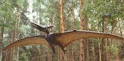 Sie sind wieder da , die Pterosaurier   ! von Lila