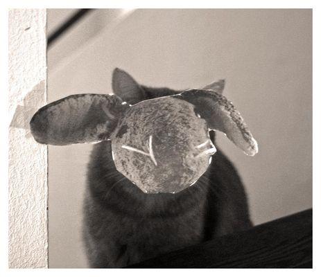 Sie wollt soooooooo gerne einmal Haeseken sein!!!