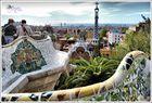 Siempre Gaudí (5)