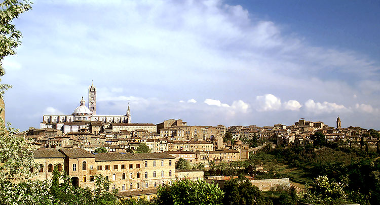 Siena (2) Blick auf die Stadt (wirkt nur in Vergrößerung!)