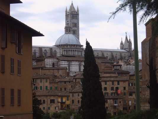 Siena from a distance