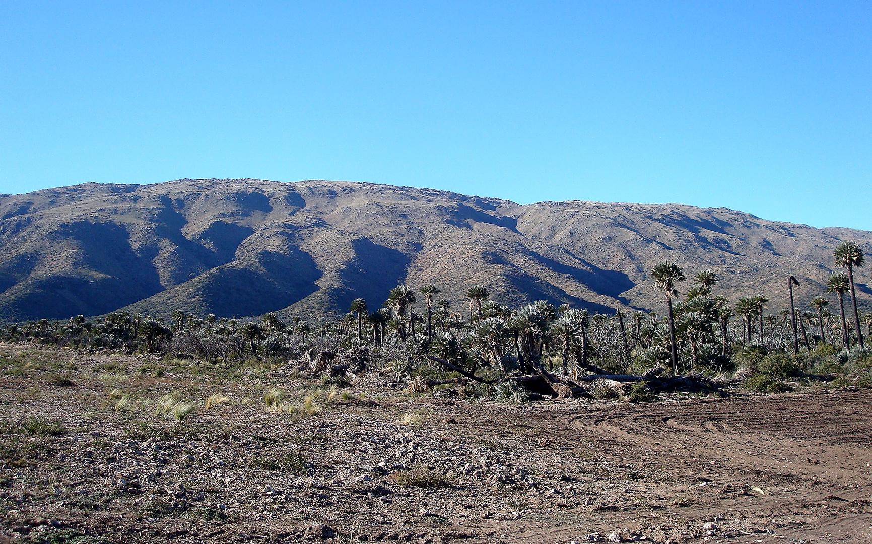 Sierra de Comechingones
