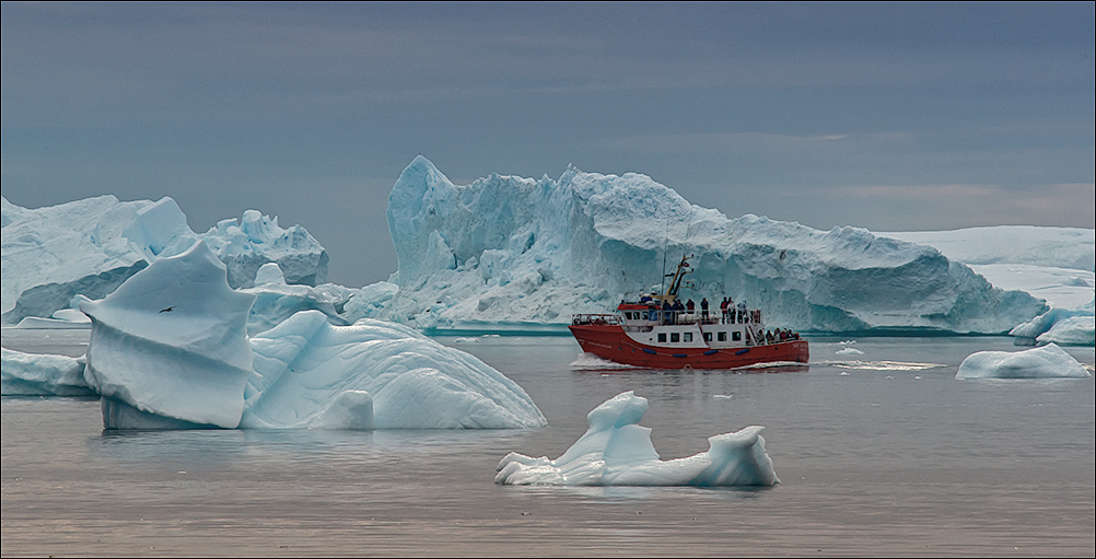 sightseeing among the icebergs