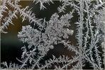 Signature hivernale sur ma fenêtre / Der Winter hat unterschrieben