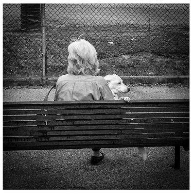 Signora in panchina con cagnolino