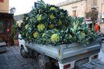 Signore e signori ! sono squisiti i cavolfiori !!!!!! delicious are the cauliflowers !!!!