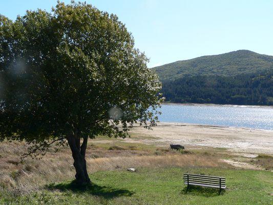 Sila Lago Ampollino