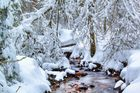 Silberbach im Winter -2-