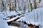 Silberbach im Winter