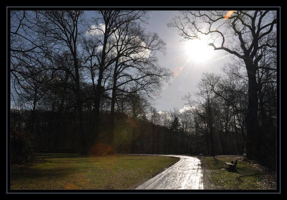 Silberweg im Februarlicht