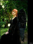 Silence Angel Part II