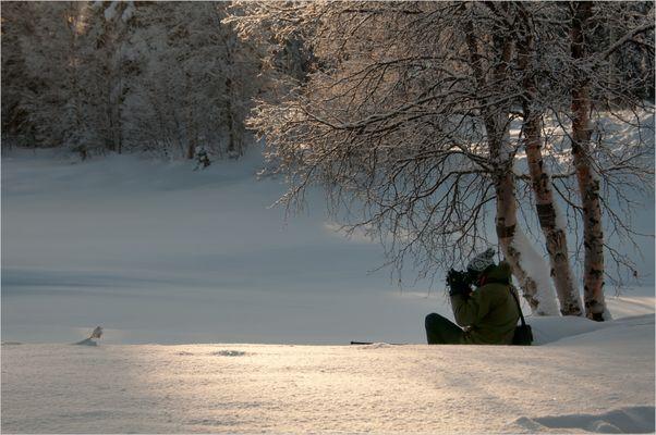 silence & beauty
