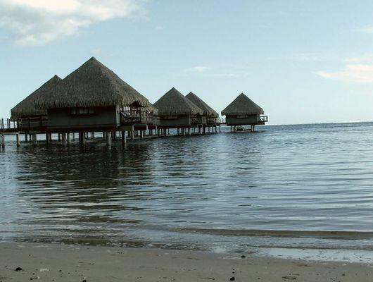 Silence , dream & meditation, Tahiti, 2007