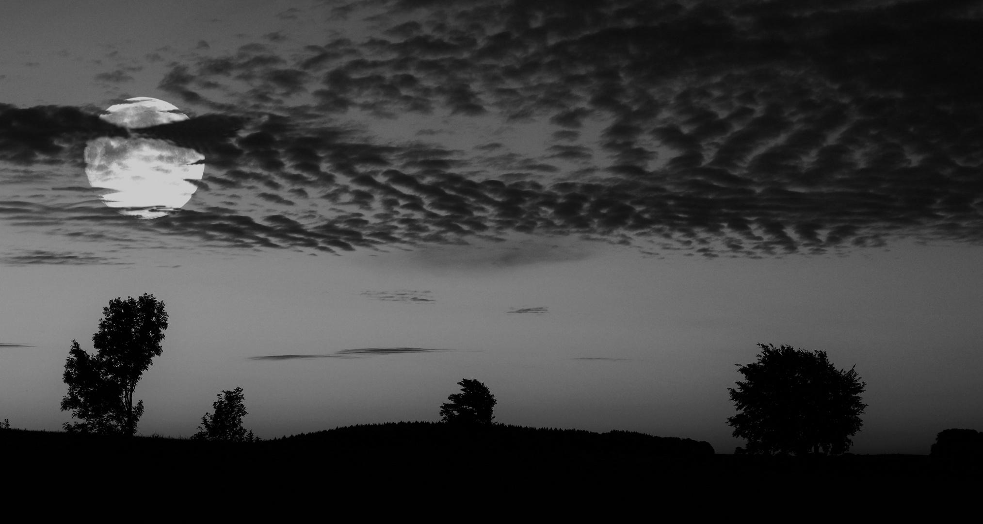 -- Silence --