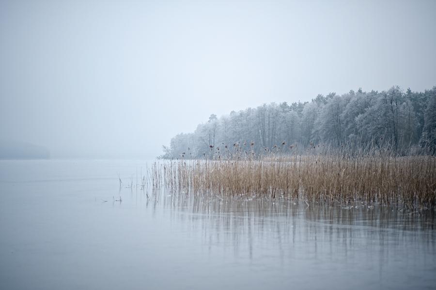 silence by Ralph Bache