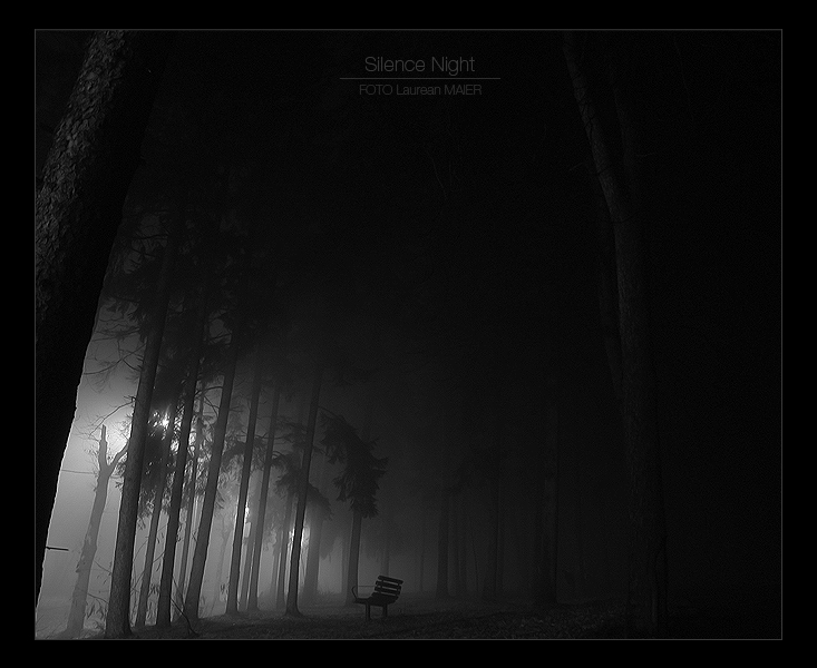 Silence, Night
