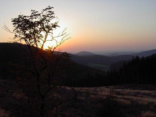 Silence Sunset