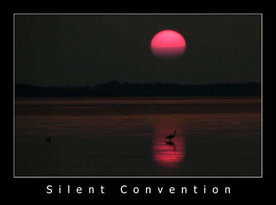 Silent Convention