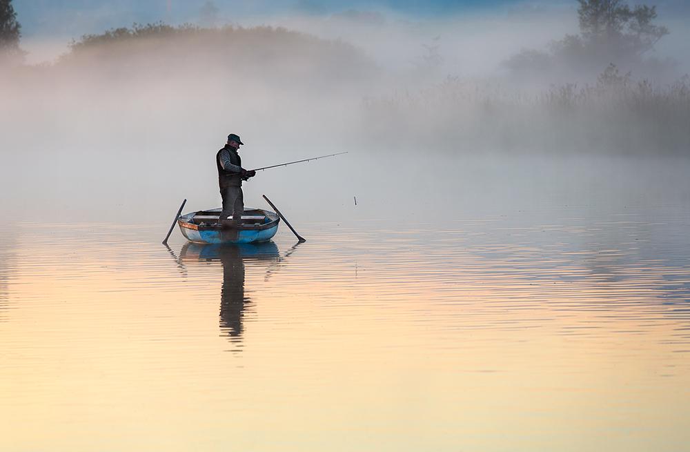 silent morning ...