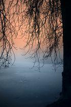silent morning