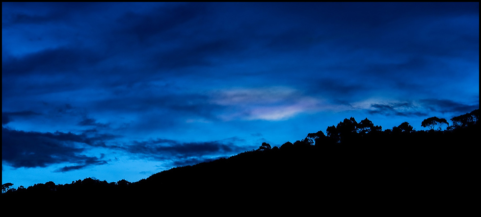 Silhouette ~ black and blue