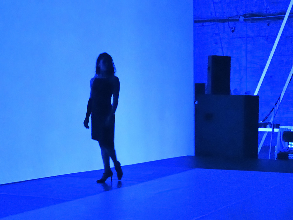 Silhouette bleue