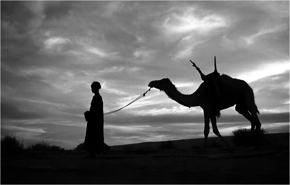 Silhouette d'un jeune Targi avec sa monture