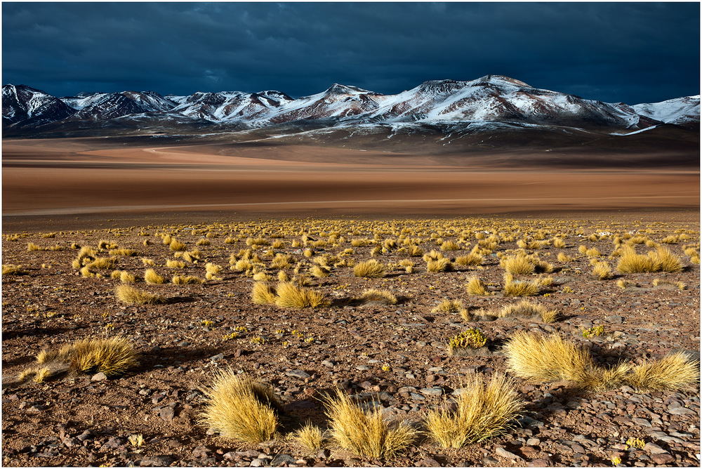 [ Siloli Desert ]