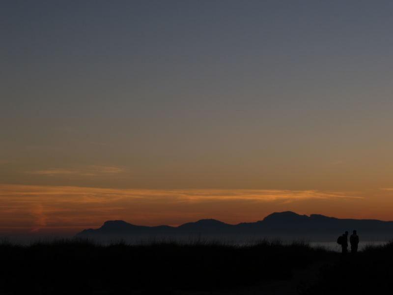 Siluetas al amanecer