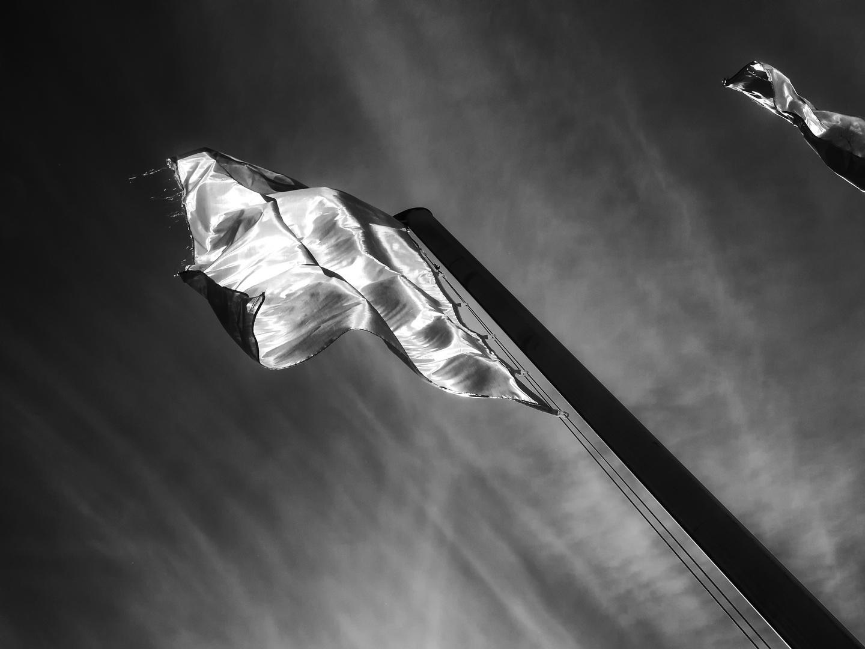 Silver Flag