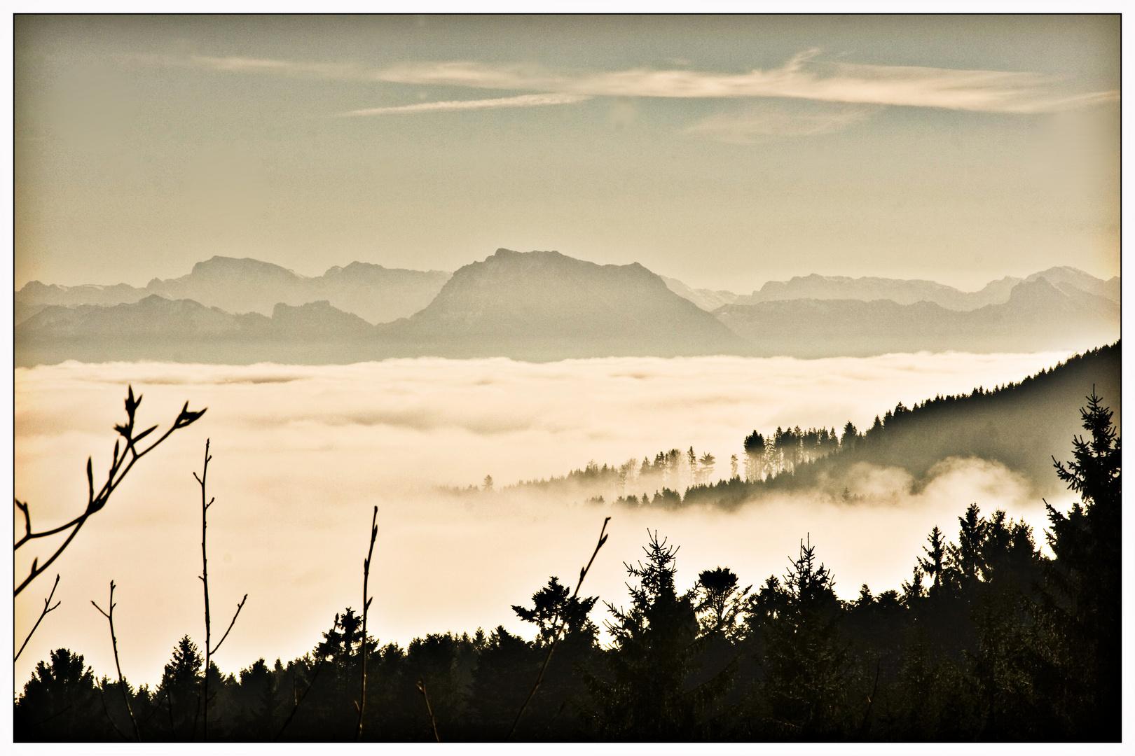 Silvester im Nebel?