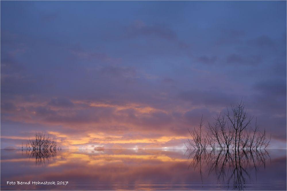 Silvestermorgen am linken Niederrhein ....