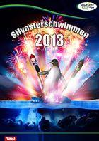 Silvesterschwimmen Achensee