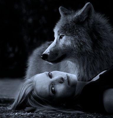 silvi und der wolf