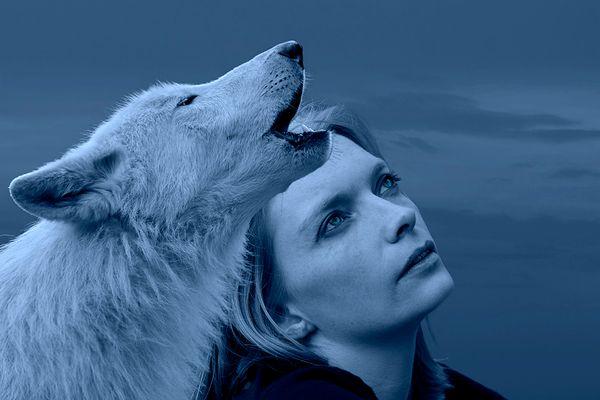 Silvi und der Wolf II