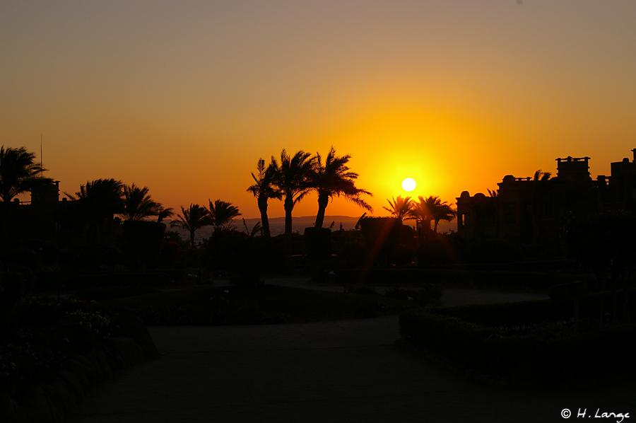 Sinai 2008