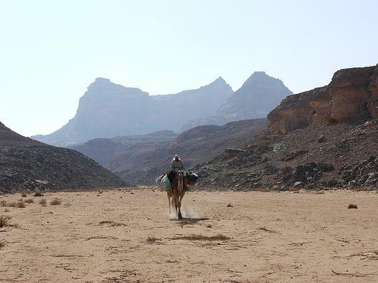 Sinai 2009 - Einer unserer Beduinen ...