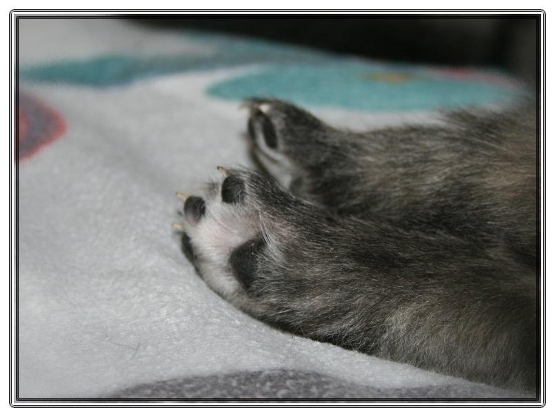 ...sind so kleine Füßchen...