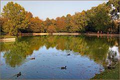 sinfonia d autunno: primo tempo