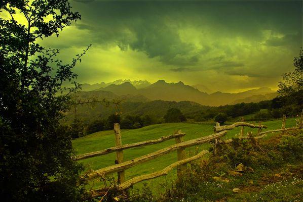 ..sinfonia de verdes y ocres..
