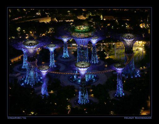Singapore Night Impressions VIII, Gardens By The Bay, Singapore / SG