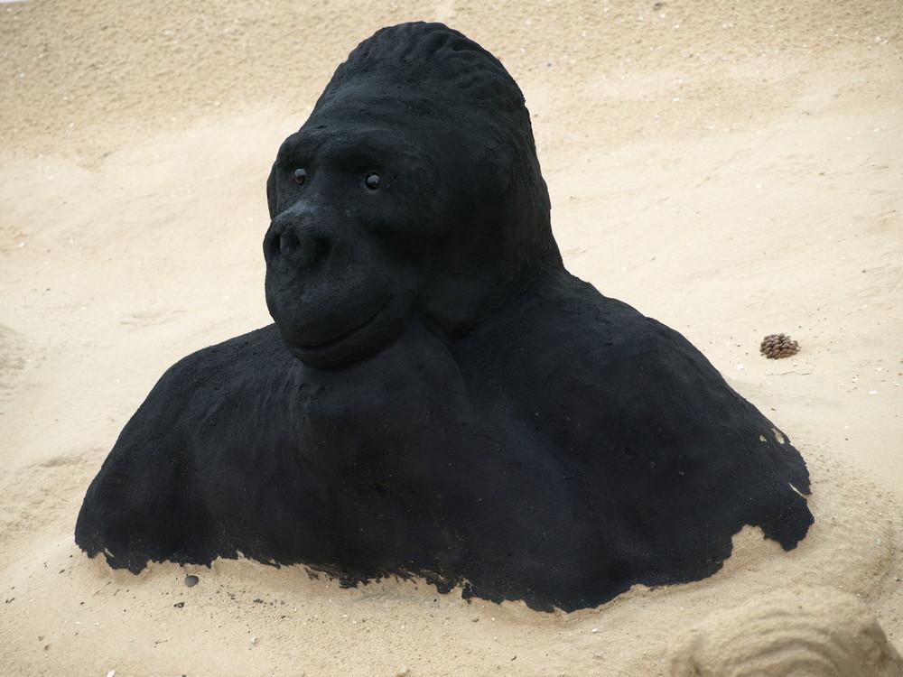 singe de sable