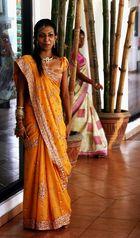 Singhalesische Schönheit
