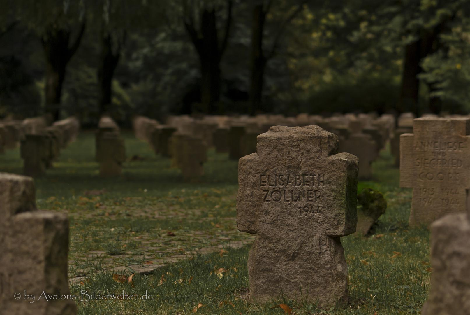 Sinnlos - Hauptfriedhof Dortmund VIII