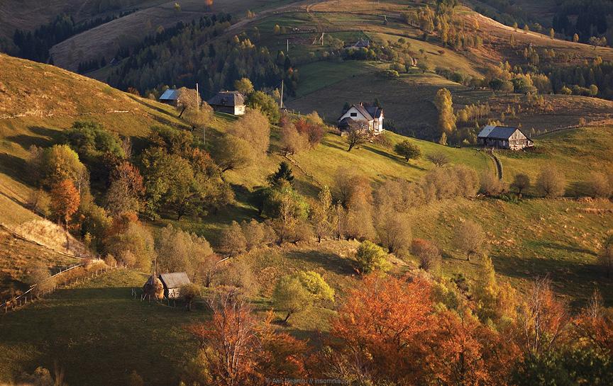 Sirnea in Autumn