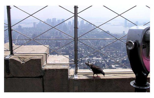 Sites of New York #2