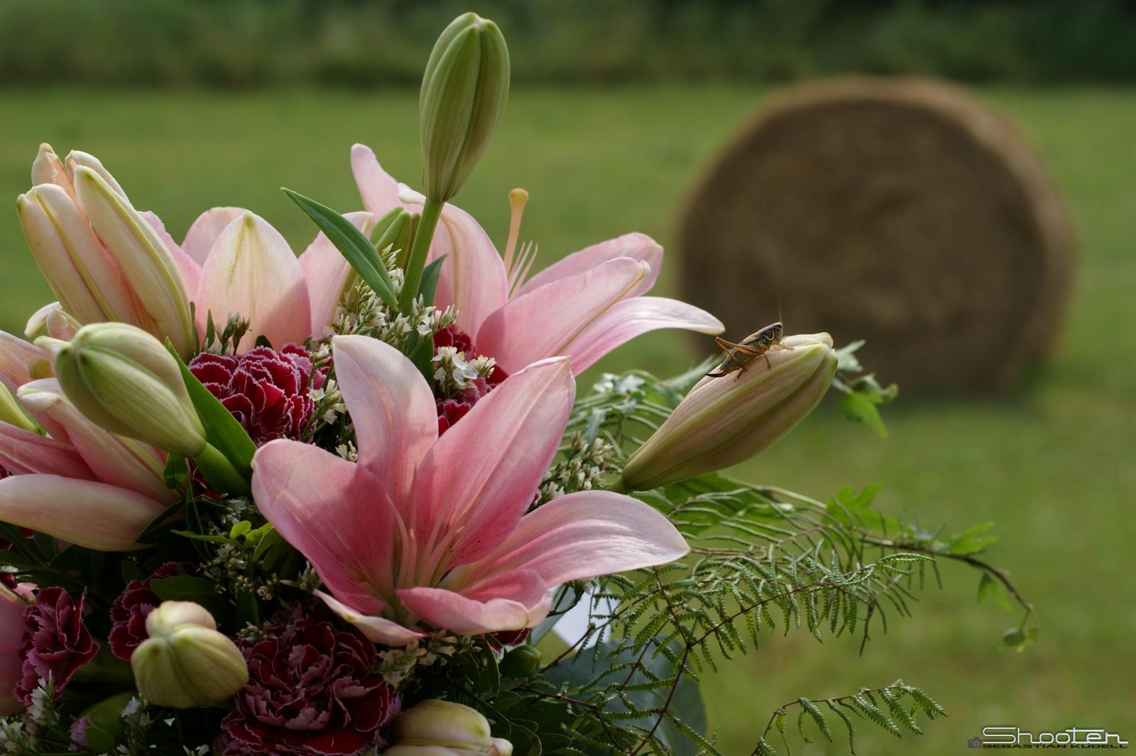 Sitzblockade auf Blumenstrauß