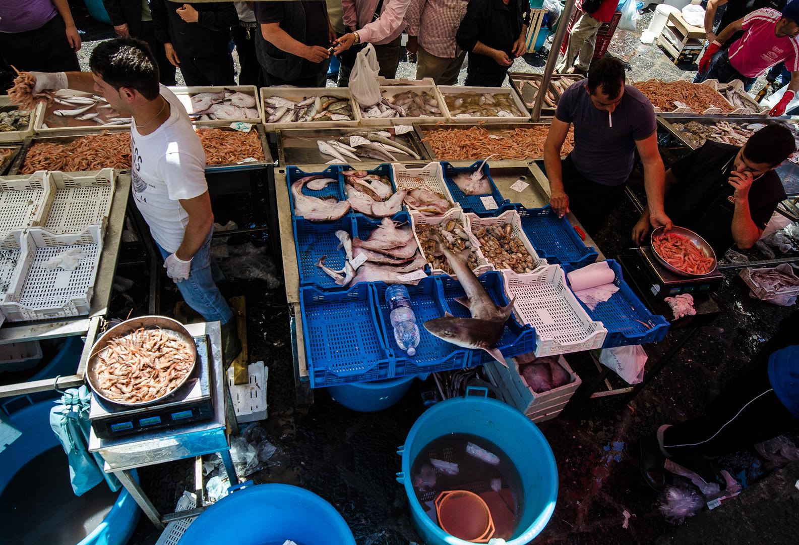 Sizilien - Nr. 17 - Fischmarkt in Catania