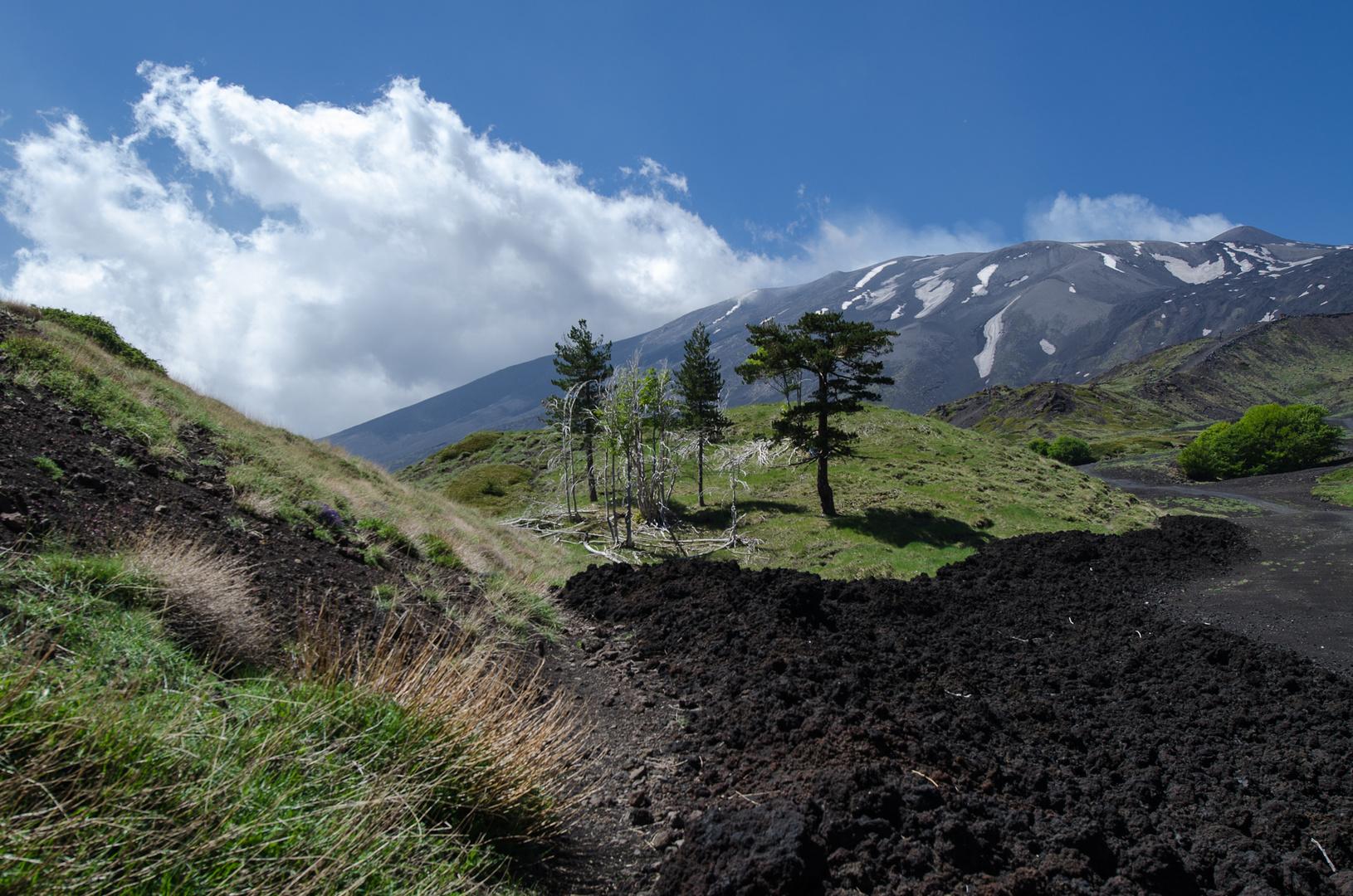 Sizilien - Nr. 4 - Ätna - Vulkanlandschaft