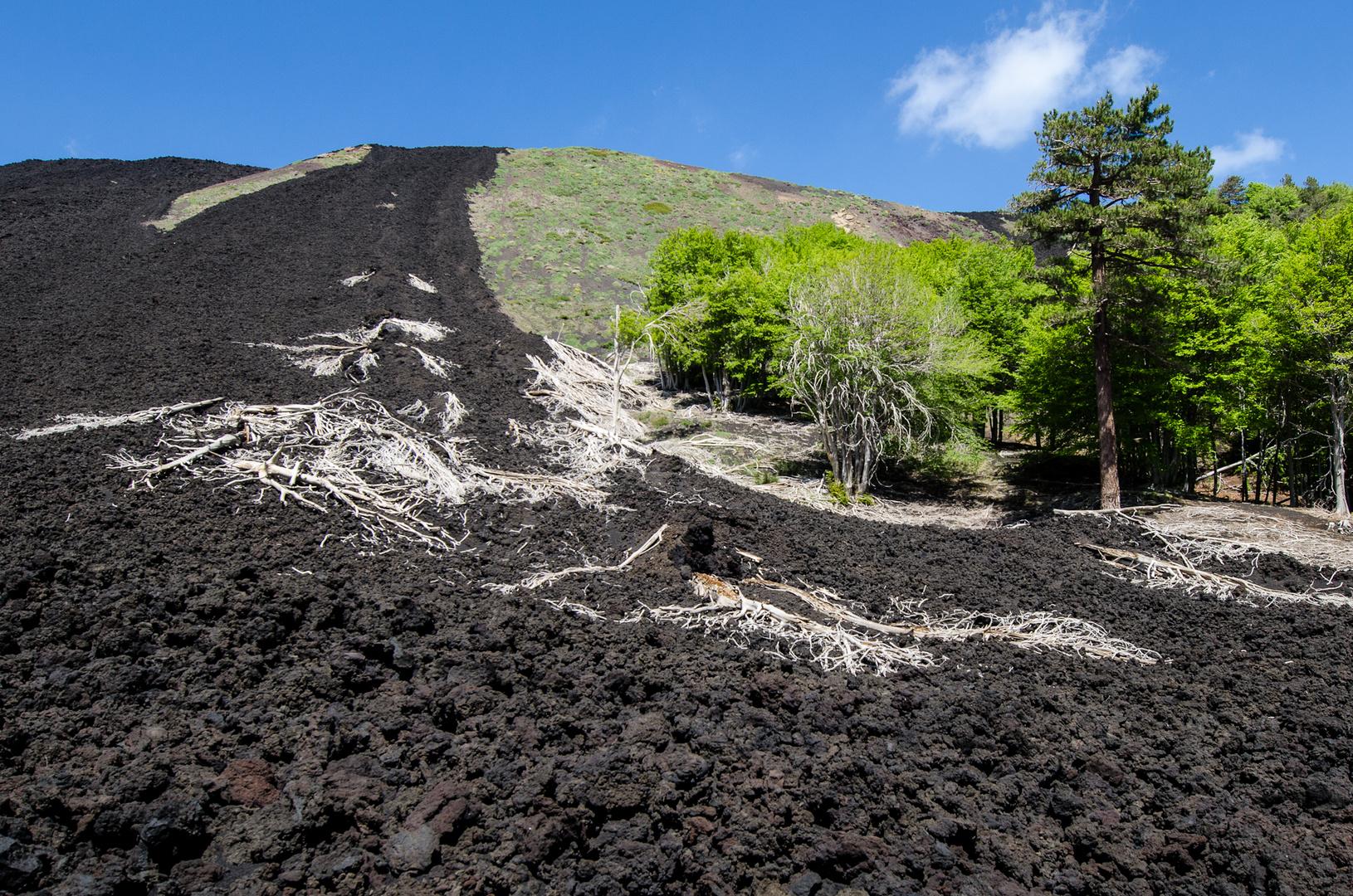 Sizilien - Nr. 5 - Ätna - Vulkanlandschaft